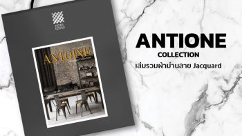ANTOINE Collection