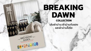 BREAKING DAWN Collection